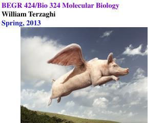BEGR 424/Bio 324 Molecular Biology William Terzaghi Spring, 2013