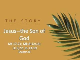 Jesus--the Son of God Mt 17,21; Mk 8-12;14; Lk 9,22; Jn 13-19 Chapter 25