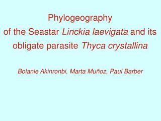Phylogeography of the Seastar Linckia laevigata and its obligate parasite Thyca crystallina