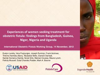International Obstetric Fistula Working Group, 14 November, 2012