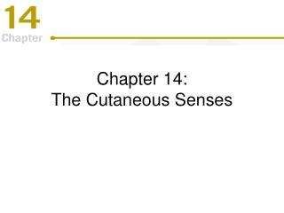 Chapter 14: The Cutaneous Senses