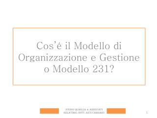 Cos' é  il Modello di Organizzazione e Gestione o Modello 231?