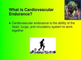 What is Cardiovascular Endurance?