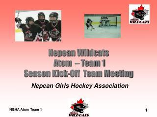 Nepean Wildcats Atom – Team 1 Season Kick-Off Team Meeting
