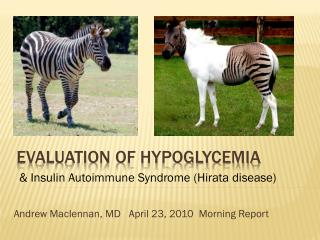 Evaluation of hypoglycemia