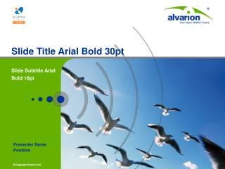 Slide Title Arial Bold 30pt