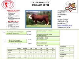 LOT 105: BMH110091 BM CEASER 09-79 P