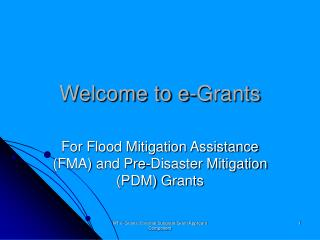 Welcome to e-Grants
