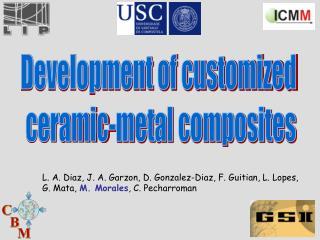 Development of customized ceramic-metal composites