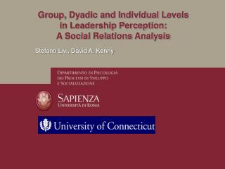 Group, Dyadic and Individual Levels in Leadership Perception: A Social Relations Analysis