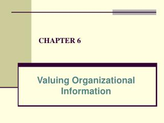 Valuing Organizational Information