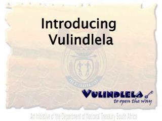 Introducing Vulindlela