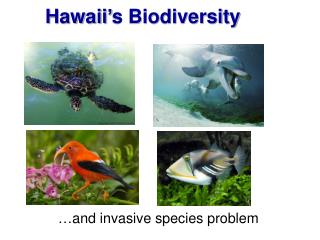 Hawaii's Biodiversity