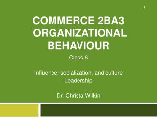 Commerce 2BA3 Organizational Behaviour