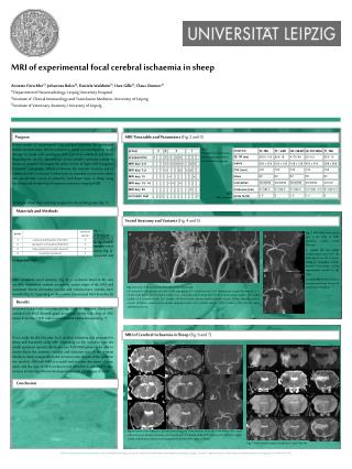 MRI of experimental focal cerebral ischaemia in sheep