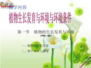 植物生长发育与环境与环境条件