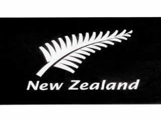 New Zealand is situated to the south-east  of Australia.