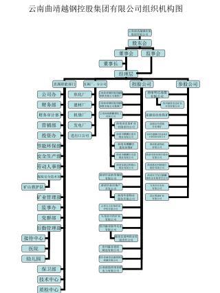 云南曲靖越钢控股集团有限公司组织机构图