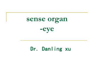 sense organ -eye
