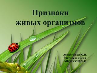 Автор: Чижов О.П. учитель биологии МБОУ СОШ №49