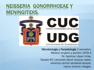Neisseria gonorrhoeae y meningitidis .
