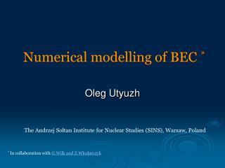 Numerical modelling of BEC *