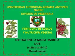 UNIVERSIDAD AUTONOMA AGRARIA ANTONIO NARRO DIVISION DE INGENIERIA FERTILIDAD DE SUELOS