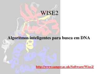 WISE2