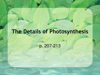 The Details of Photosynthesis