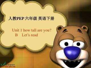 人教 PEP 六年级 英语下册