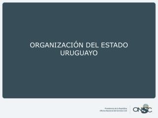 ORGANIZACIÓN DEL ESTADO URUGUAYO