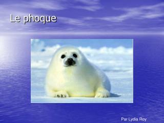 Le phoque