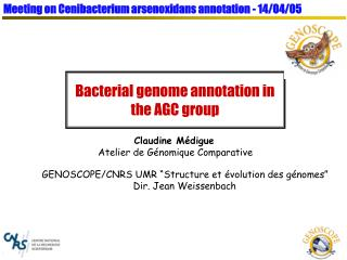 Bacterial genome annotation in the AGC group