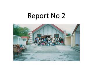 Report No 2