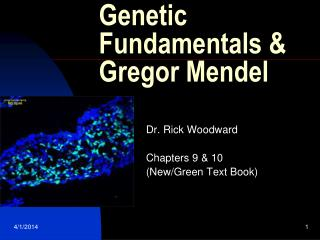 Genetic Fundamentals & Gregor Mendel