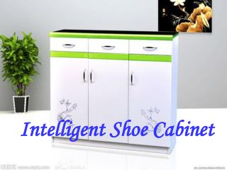 Intelligent Shoe Cabinet