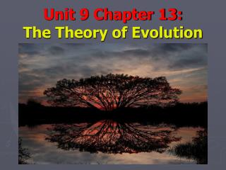 Unit 9 Chapter 13: The Theory of Evolution