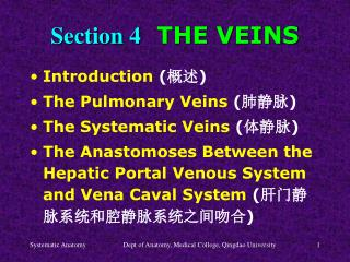 Section 4   THE VEINS