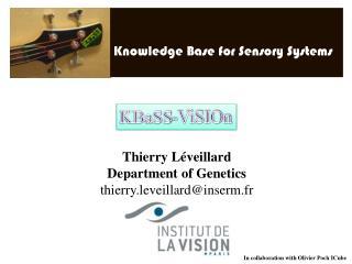 Thierry Léveillard Department of Genetics thierry.leveillard@inserm.fr