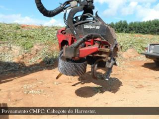 Povoamento CMPC: Cabeçote do Harvester .