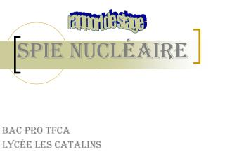Spie nucléaire