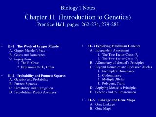 11–1	The Work of Gregor Mendel A.	Gregor Mendel's Peas B.	Genes and Dominance C.	Segregation