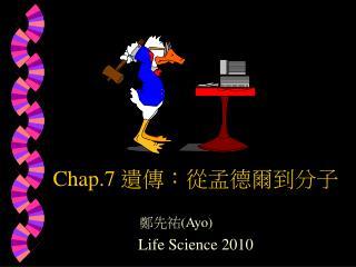 Chap.7 遺傳:從孟德爾到分子