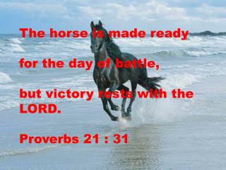 The horse is made ready  for the day of battle,  but victory rests with the LORD. Proverbs 21 : 31