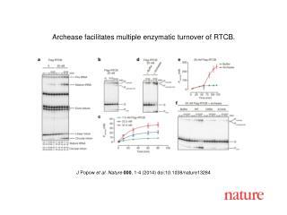 J Popow et al. Nature 000 , 1-4 (2014) doi:10.1038/nature13284