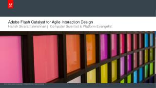 Adobe Flash Catalyst for Agile Interaction Design