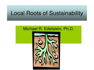 Local Roots of Sustainability