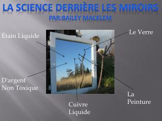 la science derrière les miroirs Par:bailey macklem