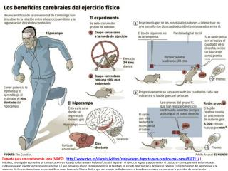 cerebro_sano_y_ejercicio_con_video_