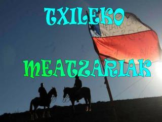 TXILEKO MEATZARIAK